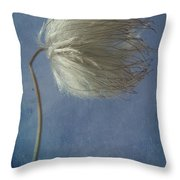 Looking Right  Throw Pillow