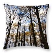 Looking Skyward Into Autumn Trees Throw Pillow