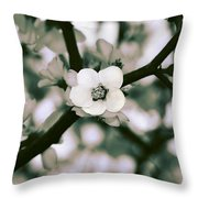 Looking Through The Blossoms 2 By Kaye Menner Throw Pillow