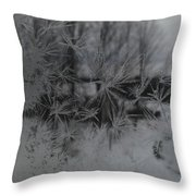 Looking Through The Frost I Throw Pillow