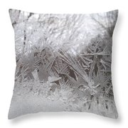 Looking Through The Frost Iv Throw Pillow