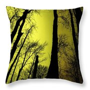 Looking Through The Naked Trees  Throw Pillow
