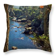 Looking Through The Trees At Point Lobos Throw Pillow