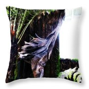 Looking Through The Window Of Extinction Throw Pillow