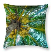 Looking Up A Coconut Tree Throw Pillow