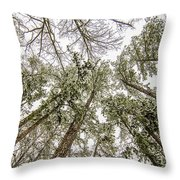 Looking Up At Snow Covered Tree Tops Throw Pillow
