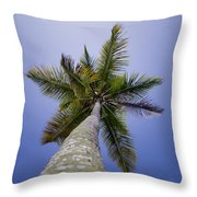 Looking Up Throw Pillow
