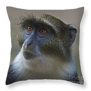 Looking Up... Throw Pillow