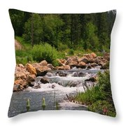 Looking Up The Rapids Throw Pillow