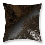 Looking Up Through Copper Forest Throw Pillow