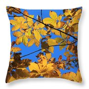 Looking Up To Yellow Leaves Throw Pillow