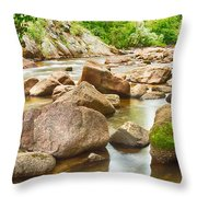 Looking Upstream The Colorado St Vrain River Throw Pillow