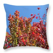 Looking Upward Throw Pillow