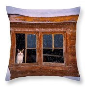 Looks Cold Out There Throw Pillow