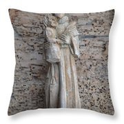 Looks Like It S You And Me Throw Pillow
