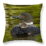 Loon Chick Rides On A Parents Back Throw Pillow