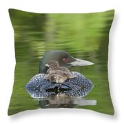 Loon Chicks -  Nap Time Throw Pillow