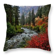 Loon Creek In Fall Colors Throw Pillow