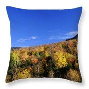 Loon Mountain Foliage Throw Pillow