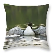 Loon Wing Spread - Drying Off Throw Pillow