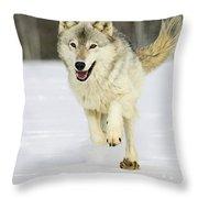 Loping Throw Pillow