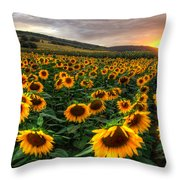 Lord Of The Sun Throw Pillow