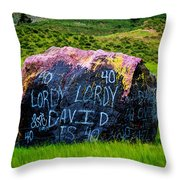 Lordy Lordy Throw Pillow by Jon Burch Photography