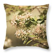 Lorie Ann Throw Pillow