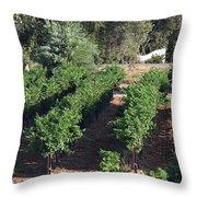 Lorimar Vines Throw Pillow