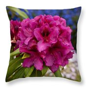 Lorna Webster Smith Truss Throw Pillow