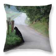 Lost Bear Cub In Cades Cove Throw Pillow