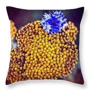 Lost Cornflower Throw Pillow