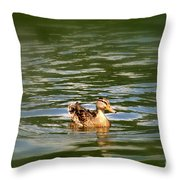 Lost Duck Throw Pillow