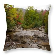 Lost Falls Throw Pillow