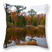 Lost In A Marsh Pond Throw Pillow