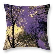 Lost In Admiration Throw Pillow