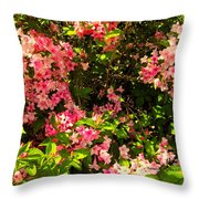 Lost In Pink Throw Pillow