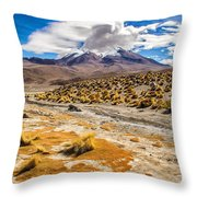 Lost In The Bolivian Desert Framed Throw Pillow