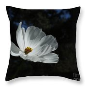 Lost In The Cosmos Throw Pillow