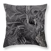 Lost In The Frost Throw Pillow