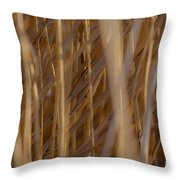 Lost In The Reed Throw Pillow