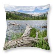 Lost Lake Colorado II Throw Pillow