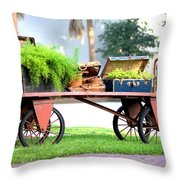 Lost Luggage Throw Pillow