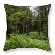 Lost My Way Throw Pillow