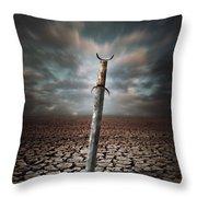 Lost Sword Throw Pillow