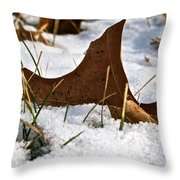 Lost To The Seasons Throw Pillow