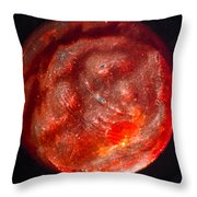 Lost World 1 Throw Pillow