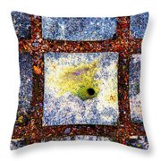 Lot Number 9 Of The Universe Throw Pillow