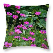 Lots Of Cosmos Throw Pillow