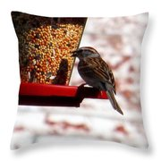 Lots Of Seeds Three Throw Pillow